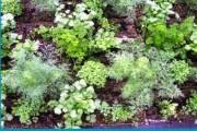 Tapis horticole THM champêtre aromate 1.05x0.65 m - Tapis aromates 2