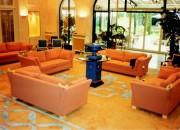 Tapis pour hôtel - Tapis sur demande en qualité hand-tuft
