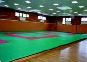 Tatamis pour judo compétition