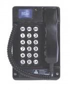 Téléphone VOIP antidéflagrant - Dimensions (mm) :  292 x 190 x 140
