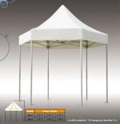 Tente hexagonale 5.85 m² - Diamètre : 3 m – hauteur maximale : 3.46 m - stand pliant en PVC