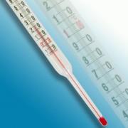 Thermomètre charcutier de cuisine - Amplitude : - 10 + 120