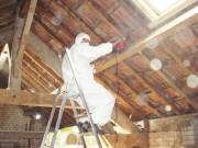 Traitement charpente bois - Traitement par pulvérisation ou par injection
