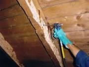Traitement de charpente bois - Extermination des insectes jusqu'au larves