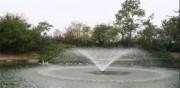 Traitement eau étangs - traitement des etangs