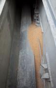 Transporteur à chaîne pour manutention céréales - Transport horizontal de produits en vrac