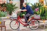 Tricycle à béquilles - Cadre en acier   -  Cadre thermo laqué