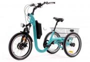 Tricycle électrique à roues 20 pouces - Utile pour les professionnels - Poids utilisateur maximum 150kg