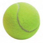 Tube 3 balles de tennis
