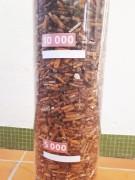 Collecteur de mégot gradué - Capacité : jusqu'à 20 000 mégot