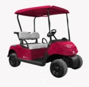 Véhicule électrique sur mesure batterie lithium (48V-100A) - Conception de véhicules électriques personnalisables