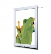 """Vitrine d'affichage extérieur LED - Formats : A2, A1, 50 x 70, 70 x 100, 20"""" × 30"""", 30"""" × 40"""", A0, B0"""