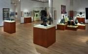 Vitrine d'exposition muséographique - Vitrine muséographique