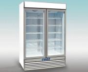 Vitrine verticale négative à porte vitrée 1236 Litres - Capacité : 1236 litres
