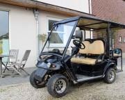 Voiturette électrique 4 places homologation usage sur route - Poids maxi autorisé : 300 kg, vitesse : 40 km/heure