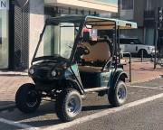 Voiturette électrique 4 places homologuée usage sur route - Poids maxi autorisé : 300 kg, pare-brise en plexi