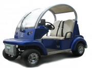 Voiturette golf électrique - 2 places