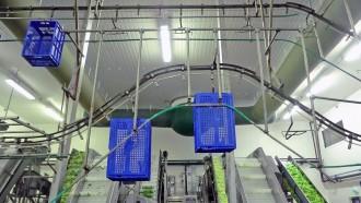 Convoyeur aérien de bacs - Devis sur Techni-Contact.com - 3
