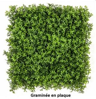 Plantes artificielles pour bureau - Devis sur Techni-Contact.com - 2