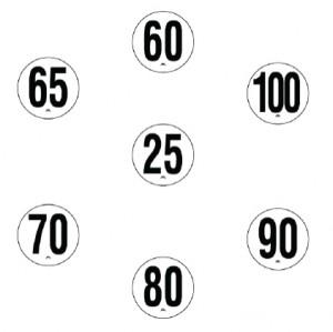 Disque de limitation de vitesse pour poids lourds - Devis sur Techni-Contact.com - 2