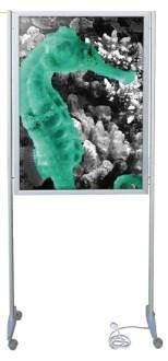Cadre d'affichage lumineux - Devis sur Techni-Contact.com - 1