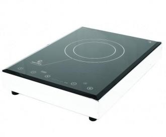 Plaque monofoyer à grande surface d'induction - Devis sur Techni-Contact.com - 1