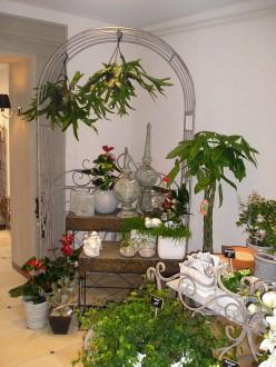 Agencement magasin de fleurs - Devis sur Techni-Contact.com - 3