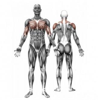 Appareil de fitness extérieur pectoraux - Devis sur Techni-Contact.com - 2