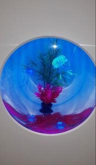 Aquarium en plexiglas - Devis sur Techni-Contact.com - 1