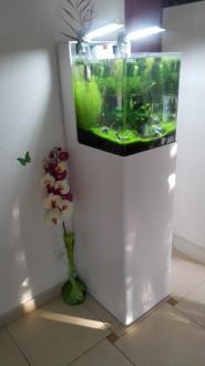 Aquarium en plexiglas - Devis sur Techni-Contact.com - 4