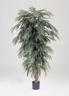 Arbre longifolia artificiel 180 cm - Devis sur Techni-Contact.com - 1