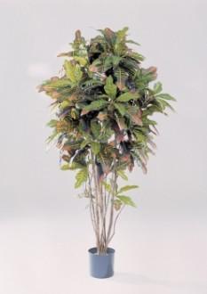 Arbre olivier artficiel - Devis sur Techni-Contact.com - 1