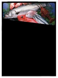 Ardoise murale pour poissonniers - Devis sur Techni-Contact.com - 1