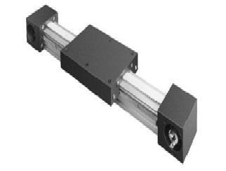 Axe linéaire motorisé - Devis sur Techni-Contact.com - 1