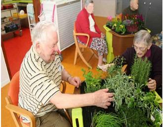 Bac carré jardin thérapeutique - Devis sur Techni-Contact.com - 5
