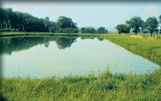Bâches pour réserves d'eau - Devis sur Techni-Contact.com - 2