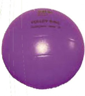 Ballons de volley pour école - Devis sur Techni-Contact.com - 1