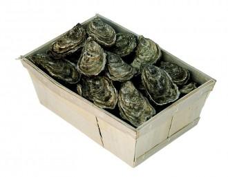 Barquette d'emballage en bois pour huître et coquillages - Devis sur Techni-Contact.com - 1