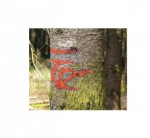 Bombe de marquage forestier - Devis sur Techni-Contact.com - 1