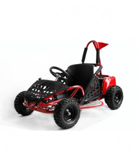 Buggy enfant 4X4 - Devis sur Techni-Contact.com - 1