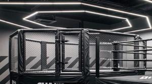Cage MMA professionnelle - Devis sur Techni-Contact.com - 2