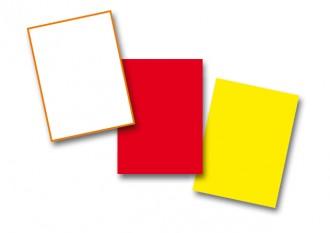 Carton d'arbitre 8.7 x 12.7 cm - Devis sur Techni-Contact.com - 1
