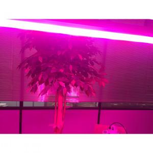 Cloche Linéaire LED CREE Grow PRO 160W - Devis sur Techni-Contact.com - 5