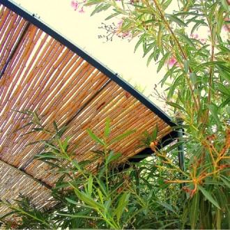 Clôture bambou - Devis sur Techni-Contact.com - 2