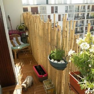 Clôture bambou - Devis sur Techni-Contact.com - 4