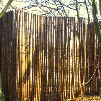 Clôture bambou - Devis sur Techni-Contact.com - 5