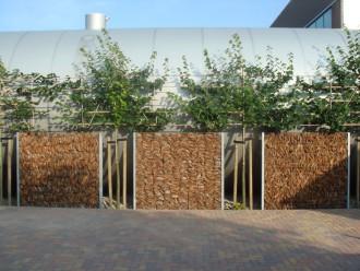 Cloture naturelle pour jardin - Devis sur Techni-Contact.com - 6