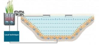 Construction piscine collective naturelle - Devis sur Techni-Contact.com - 3