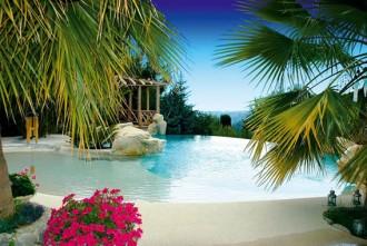 Construction piscine paysagée - Devis sur Techni-Contact.com - 2