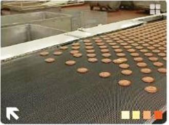 Convoyeur pour pâtisseries - Devis sur Techni-Contact.com - 1